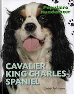 Cavalier King Charles-spaniel (Populære hunderacer)