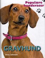 Gravhund (Populære hunderacer)