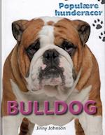 Bulldog (Populære hunderacer)