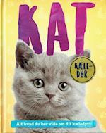 Kat (Kæle-dyr)