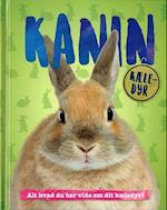 Kanin (Kæle-dyr)
