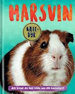 Marsvin (Kæle-dyr)
