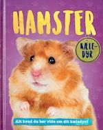 Hamster (Kæle-dyr)