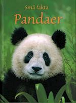 Pandaer (Små fakta)
