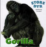 Gorilla (Store dyr)