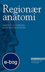Regionær anatomi