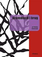 Grammatik i brug