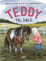 Teddy til salg (Teddybøgerne, nr. 1)