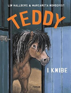 Bog, indbundet Teddy i knibe af Lin Hallberg