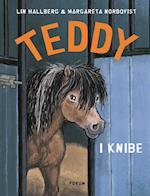 Teddy i knibe (Teddybøgerne, nr. 4)