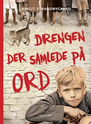 Drengen der samlede på ord af Birgit Strandbygaard