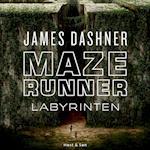 Maze Runner - Labyrinten (Maze Runner)