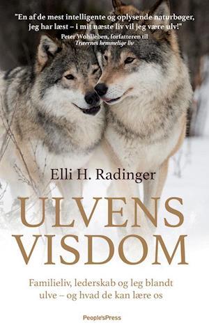 Ulvens visdom