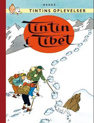 Tintins Oplevelser: Tintin i Tibet