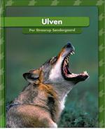 Ulven (Jeg læser)