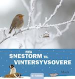 Fra snestorm til vintersyvsovere