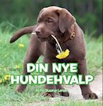 Din nye hundehvalp