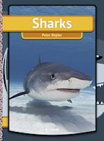 Sharks (Easy reading just for you My first book)