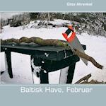 Baltisk have. Februar