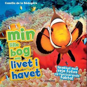 min lille bog om livet i havet-camilla de la bédoyã¨re-bog fra camilla de la bédoyã¨re