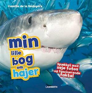 Min lille bog om hajer