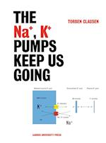 The Na+, K+ pumps keep us going