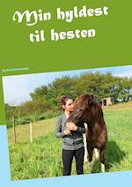 Min hyldest til hesten