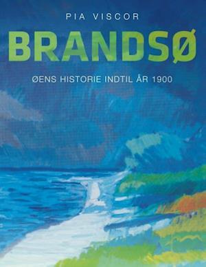 Bog, paperback Brandsø af Pia Viscor