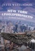NEW YORK I FUGLEPERSPEKTIV