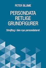 Persondataretlige grundfigurer
