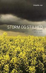 Storm og stilhed