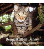 Bengalkatten Benny - og springeren Matisse