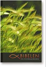 Bibelen på hverdagsdansk, softcover med slipcase