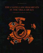 The Castellani Fragments in the Villa Giulia Volume 1 af Lise Hannestad