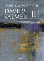 Dansk Kommentar til Davids Salmer II (nr. 2)