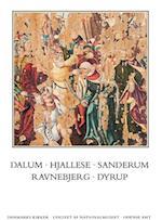 Danmarks Kirker: Odense amt, hft. 28-29