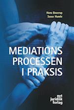Mediationsprocessen i praksis