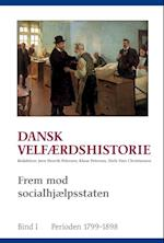 Dansk velfærdshistorie. Frem mod socialhjælpsstaten (University of Southern Denmark studies in history and social sciences, nr. 410)