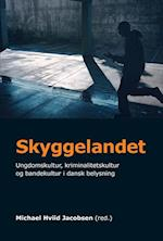 Skyggelandet (University of Southern Denmark studies in history and social sciences)