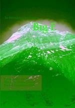 Big E af Bo Belvedere Christensen