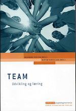 Team - udvikling og læring (Erhvervspsykologiserien)