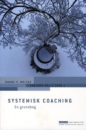 asbjørn molly Systemisk coaching fra saxo.com