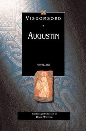 Bog indbundet Augustin af David Winther