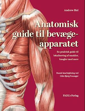 Anatomisk guide til bevægeapparatet fra andrew biel på saxo.com