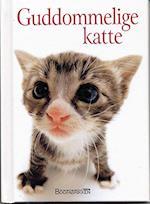 Guddommelige katte (En Helen Exley gavebog)
