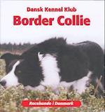 Border Collie (Racehunde i Danmark)