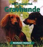 Gravhunde (Racehunde i Danmark)