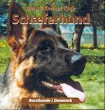 Schæferhund (Racehunde i Danmark)