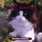 Norsk skovkat (Racekatte i Danmark)