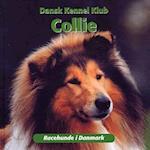 Collie (Racehunde i Danmark)